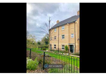 Thumbnail 4 bedroom terraced house to rent in Primrose Avenue, Downham Market
