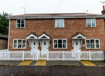 Thumbnail 2 bed terraced house for sale in Lower Street, Salhouse, Norwich