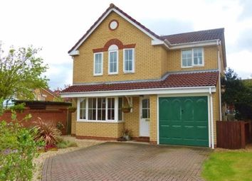 Thumbnail 4 bed property to rent in Kingswood Avenue, Thorpe Marriott, Norwich