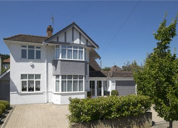 Thumbnail 4 bed detached house for sale in Robin Hood Lane, Kingston Vale