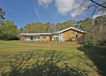 Thumbnail 4 bed detached bungalow for sale in Dene Lane, Lower Bourne, Farnham, Surrey