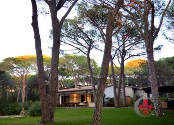 Thumbnail 5 bed villa for sale in Roccamare, Castiglione Della Pescaia, Grosseto, Tuscany, Italy