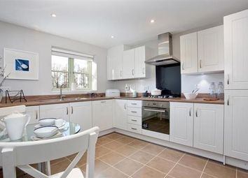 Thumbnail 4 bedroom property for sale in Off Silfield Road, Wymondham, Norfolk
