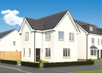 "Thumbnail 3 bed property for sale in ""The Fyvie"" at Cambuslang Road, Cambuslang, Glasgow"