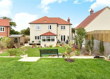 Thumbnail 4 bed detached house for sale in School Close, Hawkchurch, Axminster, Devon