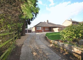 Thumbnail 2 bedroom semi-detached bungalow to rent in Sandy Lane, Taverham, Norwich