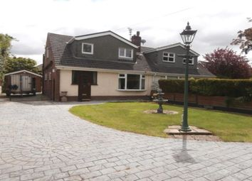 Thumbnail 3 bed bungalow to rent in Bradkirk Lane, Bamber Bridge, Preston