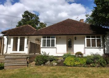 Thumbnail 4 bed bungalow to rent in Mount Pleasant, Effingham, Leatherhead