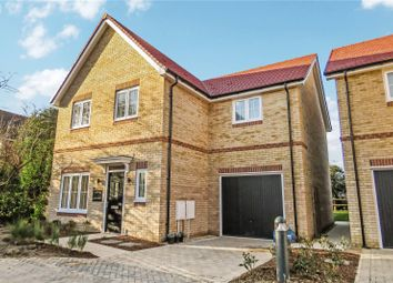 Thumbnail 4 bed detached house for sale in Robinson Gardens, Bassingbourn, Cambridgeshire