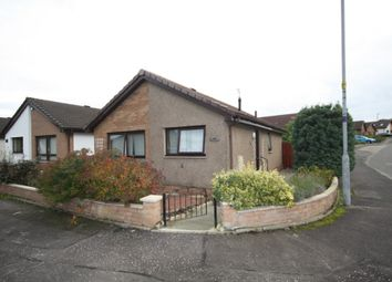 Thumbnail 2 bed bungalow to rent in Stein Square, Bannockburn, Stirling