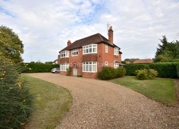Thumbnail 4 bed detached house to rent in Pitts Lane, Earley