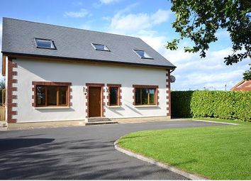 Thumbnail 5 bed detached house for sale in Branganstown, Kilcock, Co. Kildare