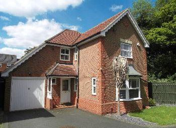 Thumbnail 4 bed detached house to rent in Whitebeam Road, Oadby