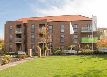 Thumbnail 1 bed property for sale in Lower Turk Street, Alton