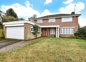 Thumbnail 4 bedroom detached house for sale in Saddlewood, Camberley, Surrey