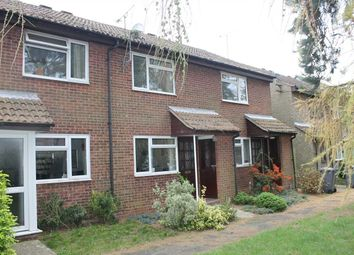 Thumbnail 2 bed terraced house to rent in Lachlan Green, Woodbridge