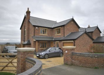 Thumbnail 4 bed detached house to rent in Hermitage Road, Saughall, Chester