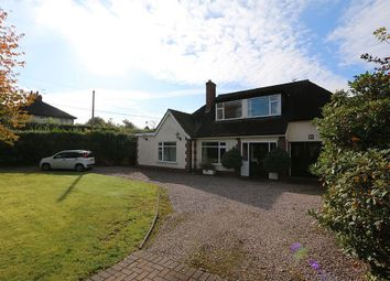 Thumbnail 4 bed detached bungalow to rent in 84, Rope Lane, Wistaston, Crewe, Cheshire