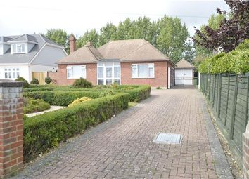Thumbnail 2 bed detached bungalow for sale in Harley Shute Road, St Leonards On Sea