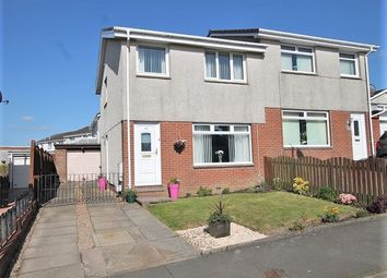 Thumbnail 3 bed semi-detached house for sale in Anstruther Street, Law