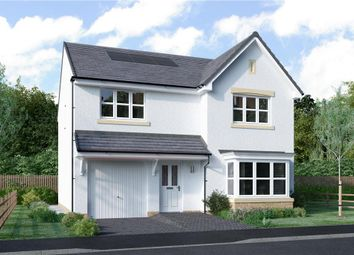 "Thumbnail 4 bedroom detached house for sale in ""Tait"" at Blantyre Mill Road, Bothwell, Glasgow"
