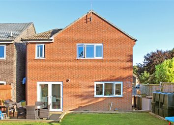 Thumbnail 4 bed detached house for sale in Burgess Way, Brooke, Norwich