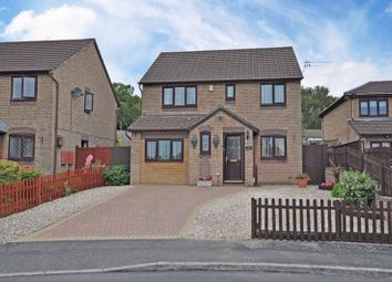 Thumbnail 4 bed detached house for sale in Stylish Family House, Fenner Brockway Close, Newport
