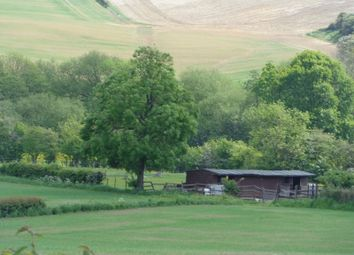 Thumbnail Equestrian property for sale in Equestrian Lane Off Church Road, Shuttlewood, Chesterfield