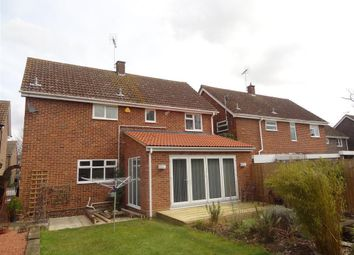 Thumbnail 4 bed property to rent in Thirlmere Close, Great Notley, Braintree