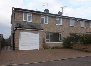 Thumbnail 4 bedroom semi-detached house to rent in Ely Road, Littleport, Ely