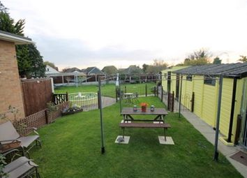 Thumbnail 3 bed bungalow for sale in Tudor Green, Jaywick, Clacton-On-Sea