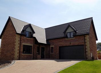 Thumbnail 5 bed detached house for sale in No.3, The Eamont, William's Pasture, Aglionby