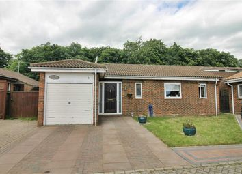 Thumbnail 4 bed detached bungalow to rent in William Smith Close, Woolstone, Milton Keynes, Bucks
