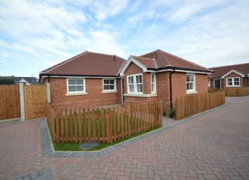 Thumbnail 3 bed detached bungalow for sale in Nayland Road, Mile End, Colchester