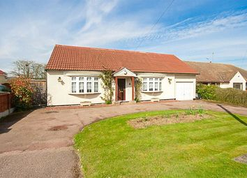 Thumbnail 2 bed bungalow to rent in Common Road, Ingrave, Brentwood