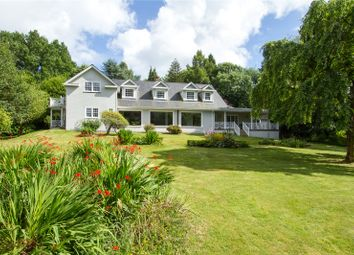 Thumbnail 5 bed detached house for sale in Hatch Lane, Haslemere, Surrey