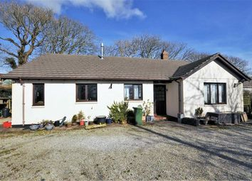 Thumbnail 3 bed detached bungalow for sale in Shop, Morwenstow, Bude, Cornwall