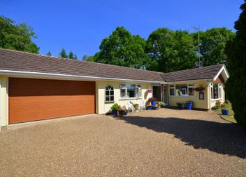 Thumbnail 3 bed detached bungalow for sale in Guildford Road, Loxwood