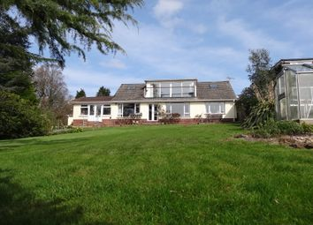 Thumbnail 3 bed property for sale in Oak Close, Ottery St. Mary