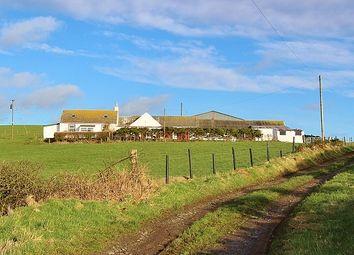 Thumbnail 4 bed farmhouse for sale in Cairngarroch Farm, Stoneykirk