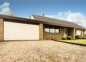 Thumbnail 4 bed detached house for sale in Hatton Place, Luncarty, Perth