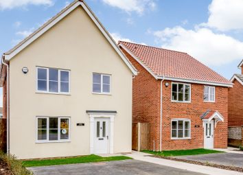 Thumbnail 4 bed detached house for sale in Beccles Road, Hales, Norwich