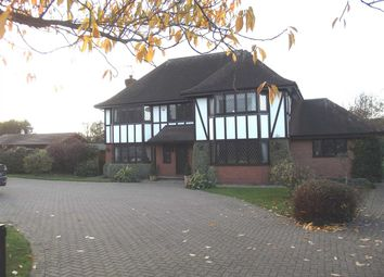 Thumbnail 4 bed detached house to rent in Tudor Lodge, Common Road, Nazeing