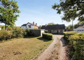 3 bed detached bungalow for sale in Molehill Road, Chestfield, Whitstable CT5