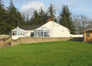 Thumbnail 4 bed detached house for sale in Bullamoor Road, Northallerton