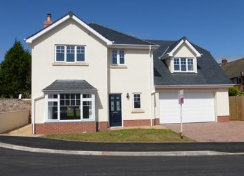 Thumbnail 4 bed detached house for sale in Birch Gardens, Bircham Road, Minehead