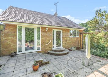 Thumbnail 3 bed bungalow for sale in Furzehill Crescent, Crowthorne