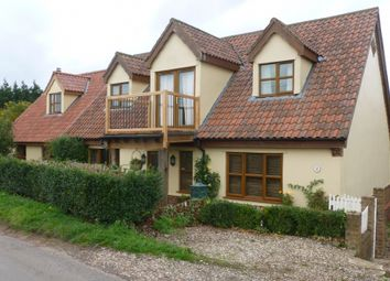 Thumbnail 4 bed detached house to rent in The Lane, Salters Lode