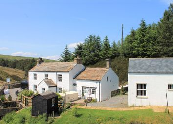 Thumbnail 4 bed detached house for sale in Mill Cottage, Nenthead, Alston, Cumbria