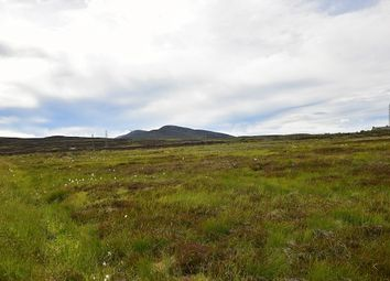 Thumbnail Land for sale in Croft At Ramscraigs, Dunbeath